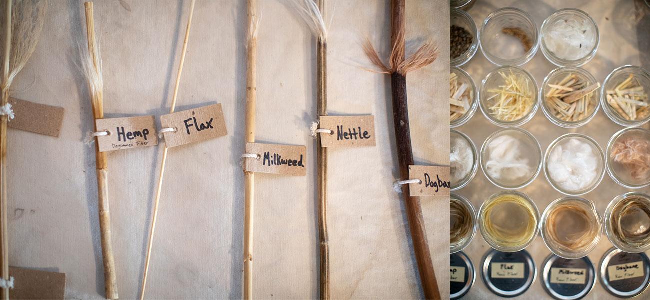 bast fibers, photo by Paige Green